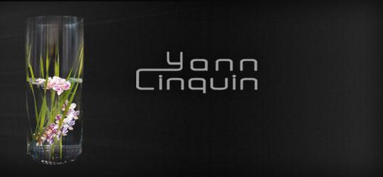 img-home-yanncinquin
